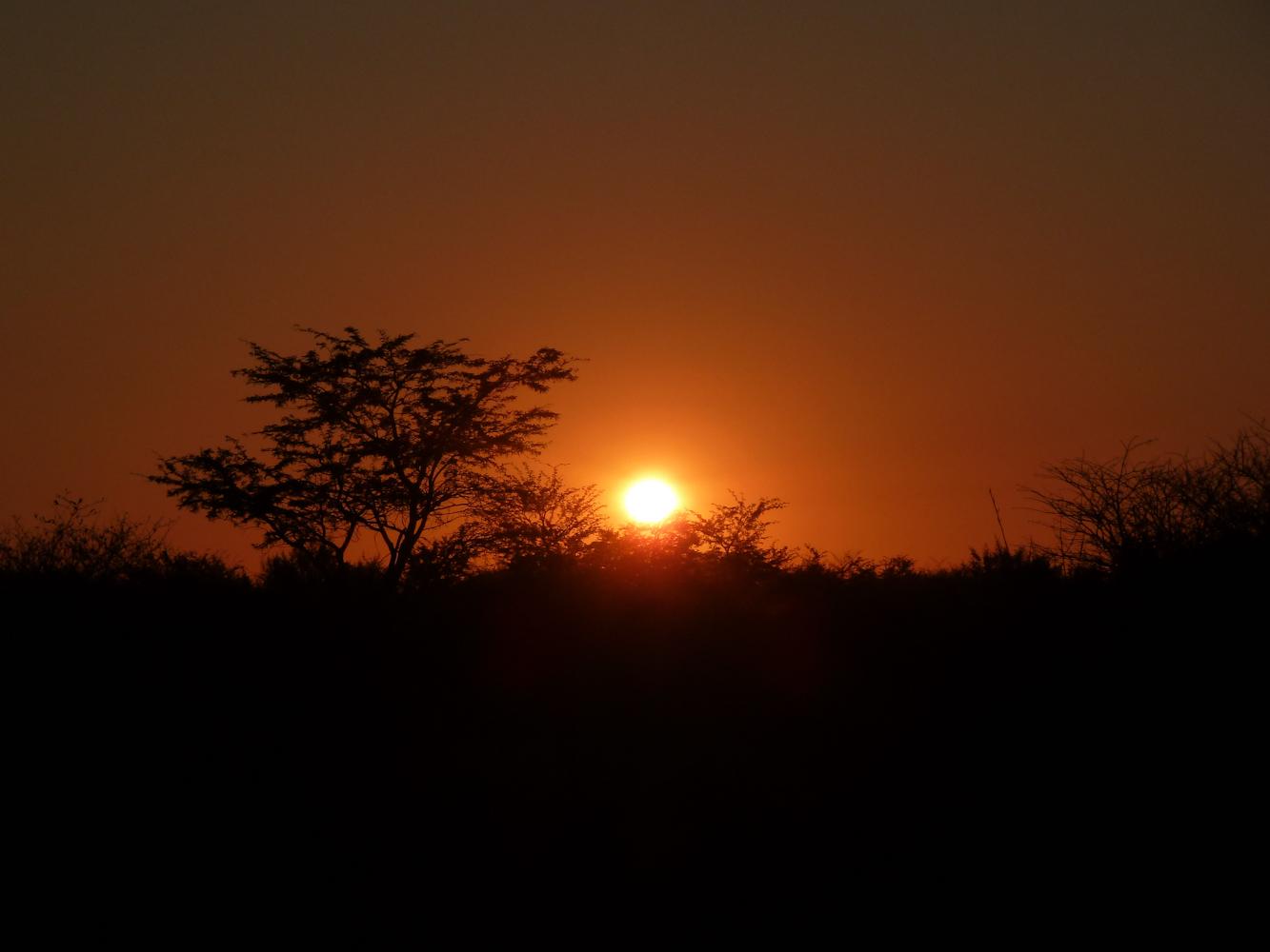 Botswana-1060040